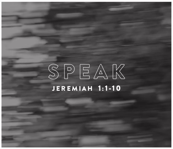 12-speak