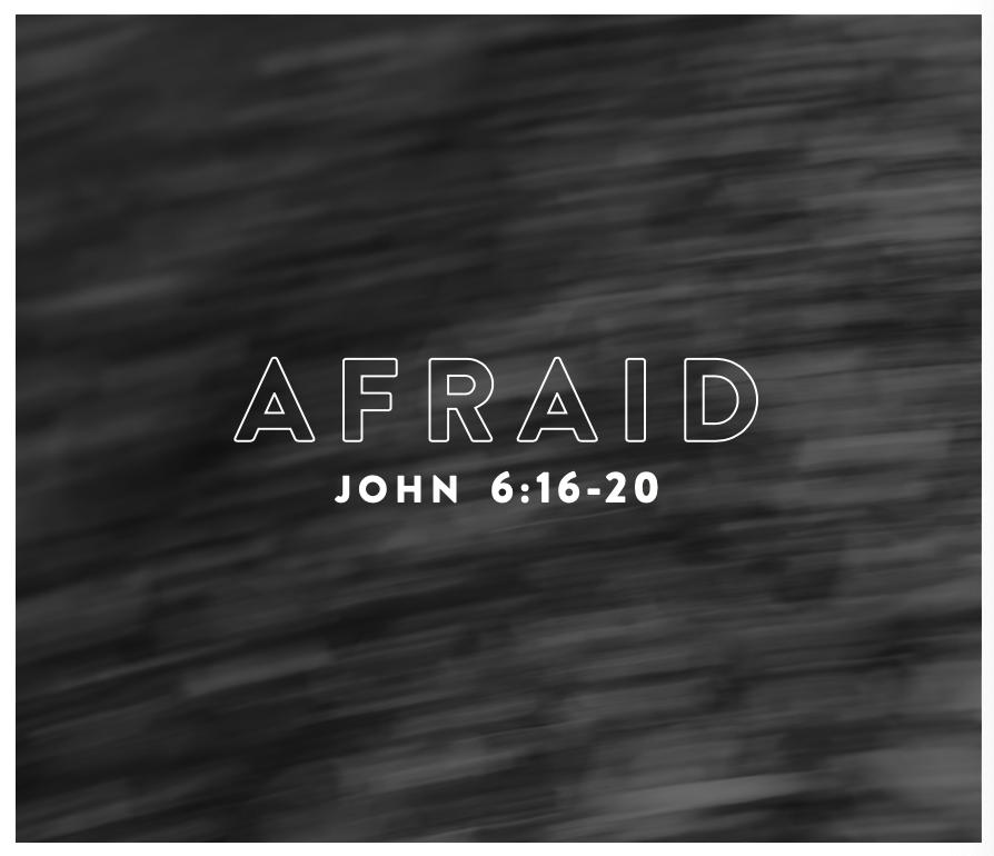 28-afraid